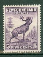 Newfoundland: 1932/38   Pictorial  SG225     5c   Violet   MH - Neufundland