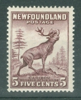 Newfoundland: 1932   Pictorial  SG213     5c  Maroon    MH - Neufundland