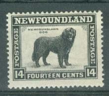 Newfoundland: 1932   Pictorial  SG216     14c      MH - Newfoundland