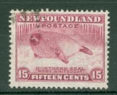 Newfoundland: 1932   Pictorial  SG217     15c      Used - Newfoundland