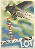 Etiquette Ou Billet Cie Lot Airlines - Pologne - Poznan Warszawa - Bilety P.P.L. Lot - Étiquettes à Bagages