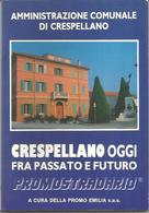 Crespellano Oggi Fra Passato E Futuro, Amministrazione Comunale, 1987, 80 Pp. - Livres, BD, Revues