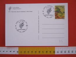 A.08 ITALIA ANNULLO - 2001 LESSONA BIELLA 25 ANNI VINO DOC D.O.C. UVA GRAPPOLO D' ARGENTO NEBBIOLO VIN RED WINE - Vini E Alcolici