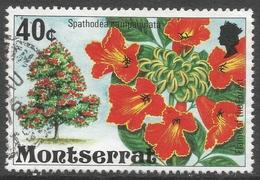 Montserrat. 1976 Flowering Trees. 40c Used. SG 379 - Montserrat