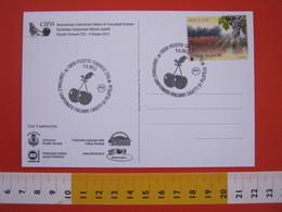 A.08 ITALIA ANNULLO - 2012 PECETTO TORINO FRUTTA CILIEGIA CAMPIONATO ITALIANO CADETTI DI FILATELIA - Frutta