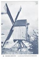 Messelbroek: Verdwenen Schuttersveldmolen ( 2 Scans) - België