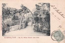 GIBRALTAR - Whale Bone's Jaws Arch. - Gibraltar