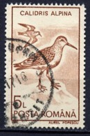 Roumanie - Rumänien - Romania 1991 Y&T N°3928 - Michel N°3649 (o) - 5l Bécasseau - 1948-.... Republiken