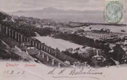 GIBRALTAR - Alameda. - Gibraltar
