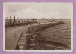 Senigallia - Il Molo - Ancona