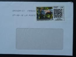 Vin Raisin Wine Grape Timbre En Ligne Sur Lettre (e-stamp On Cover) TPP 3974 - Vins & Alcools