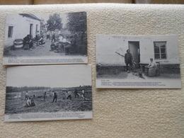 3 Cpa Stockel Bois L'experience Colonie Communiste Woluwe St-pierre - St-Pieters-Woluwe - Woluwe-St-Pierre