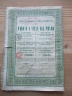 Compagnie Du Chemin De Fer Madrid A Villa Del Prado - Titre De 5 Action De 100 Fr - Transports