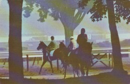 New York Saratoga Springs Raceway Morning Mist 1973 - Saratoga Springs