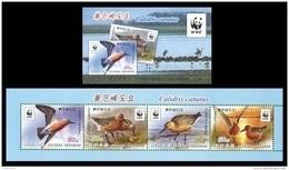 North Korea 2015 Mih. 6247/50 Fauna. WWF. Birds. Red Knot (booklet) MNH ** - Korea, North