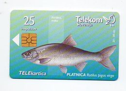 Telekom Slovenije 25 Imp. - PLATNICA - Slovenia