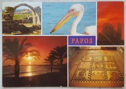 PAFOS - Multiview - Pelican - CYPRUS Cipro Vg - Cipro