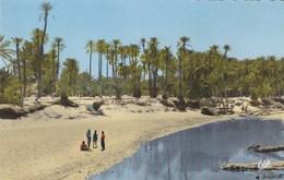 Bechar, L'Oued Et La Palmeraie (pk56218) - Bechar (Colomb Béchar)