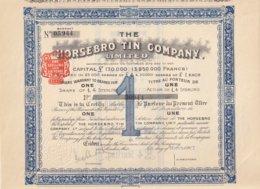 THE HORSEBRO TIN COMPANY - Mines