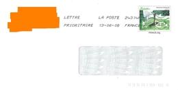 PAP Tableau Le Printemps Picasso Chèvre Toshiba - Picasso