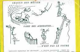 BUVARD :  Chacun Son Metier  Faire Des Acrobaties  N'est Pas Le Votre - Sport