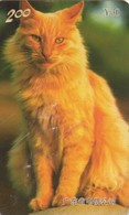 TARJETA TELEFONICA DE CHINA (FAUNA - GATOS), CAT 1/3. P0208(3-1). (243) - Gatos