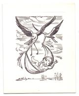 Geboortekaartje Carte De Naissance - Greetje Verbeke - Heule 21 Juni 1961 - Naissance & Baptême