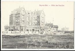 DE HAAN - Coq-sur-Mer Hôtel Des Familles - De Haan