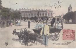 Lyon. Place Bellecour. Voiture Des Chèvres (a) - Lyon