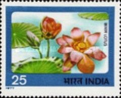USED STAMPS India - Indian Flowers -  1977 - India