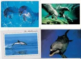 """Dauphins """"Dauphin Bleu Et Blanc De La Méditerranée,Smiley Mauritius/sun Star...lot De 5 Cartes TBE - Dauphins"""