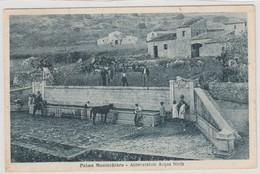 Cartolina - Palma Di Montechiaro - Abbeveratoio Acqua Ninfa - Agrigento