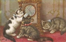 """""""Cats And The Clock.How Does It Worrk?"""" Tuck Oilette Postard # 3563 - Tuck, Raphael"""