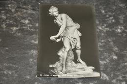 5188      ROMA, I. BERNINI, DAVID, MUSEO BORGHESE - Musei