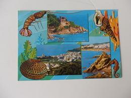 CPSM De Crustacés Lloret De Mar (Costa Brava) En Espagne. - Poissons Et Crustacés