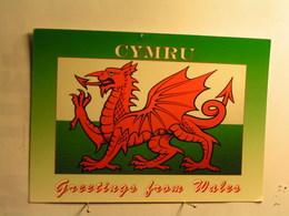 Greetings From Wales - Cymru - Pays De Galles