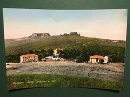 Cartolina Carpegna - Passo Cantoniera M.1007 - 1961 - Pesaro