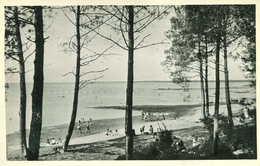 CAZAUX = Bords Du Lac  La Jemeyre  465 - Soulac-sur-Mer