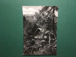 Cartolina Rifugio Di Trivena - Breguzzo - Trento - 1960 - Trento