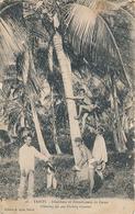 TAHITI - N° 16 - DENICHEUR ET DECORTIQUEUR DE COCOS - Polynésie Française