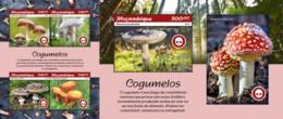 Z08 MOZ190102ab Mozambique 2019 Mushrooms Pilze MNH ** Postfrisch Set - Pilze