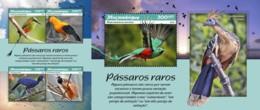 Z08 MOZ190109ab Mozambique 2019 Rare Birds MNH ** Postfrisch Set - Vögel