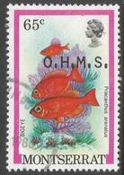 Montserrat. 1981 Official. 65c Used. SG O48 - Montserrat