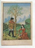 Le Livre Des Simples Platéarius : Rcolte Du Baume Opobalsamum - Fin XVè S. BN 12322 Fol 187 V° Cp Vierge - Santé