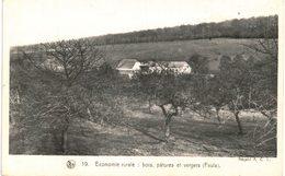 FAULX LES TOMBES   Economie Rurale Bois, Pâtures Et Vergers. - Gesves