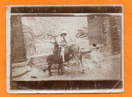 PHOTO ANCIENNE ALBUMINE DE 1924 - CORSE - ENFANT SUR ANESSE DONT L'ANON EST EN TRAIN DE LA TETER - ANIMAL - ANE - Lieux