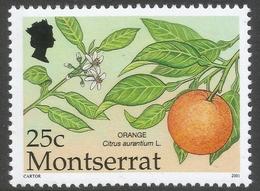 Montserrat. 2001 Caribbean Fruits. 25c MNH SG 1199 - Montserrat