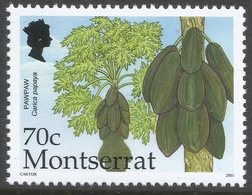 Montserrat. 2001 Caribbean Fruits. 70c MNH SG 1202 - Montserrat