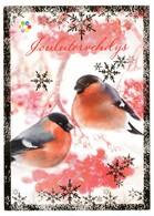 Postal Stationery Finland - CHRISTMAS - BIRDS - GOUDVINK - BULLFINCH - GIMPEL - BOUVREUIL PIVOINE - 2012  Postage Paid - Finland
