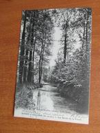 BOISSY-L'AILLERIE Bords De La Viosne  95 Val D'oise - Boissy-l'Aillerie